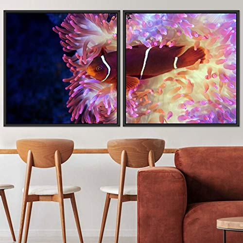 "bestdeal depot Marine Life Multicolor Photography 2 Panels Framed Canvas Wall Art Prints for Living Room,Bedroom Framed Artwork Decoration Ready to Hang - 16""x16""x2 Panels"