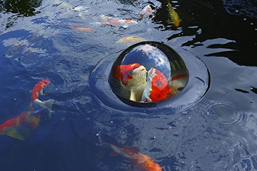 Velda Large Floating Fish Dome - 2