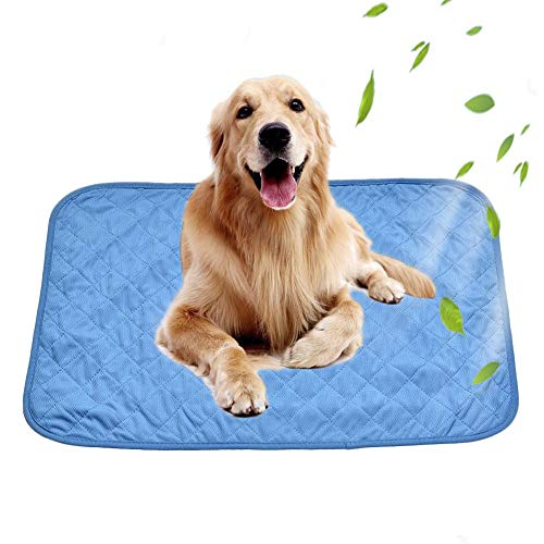 winnerruby - Esterilla enfriadora para Perros, 90 x 60 cm, Duradera, para Mascotas, Gel no tóxico
