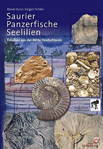 Saurier, Panzerfische, Seelilien: Fossilien aus der Mitte Deutschlands