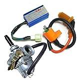 Auto-Moto Carburetor & Performance CDI Box Ignition Coil for Honda CRF 50 CRF50 2004-2009
