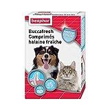 Beaphar - Comprimés haleine fraîche - Combat la mauvaise haleine du chien et du chat - À base d'extrait naturel de chlorophylle - Traitement de 2 à 3 semaines - Boîte de 40 comprimés