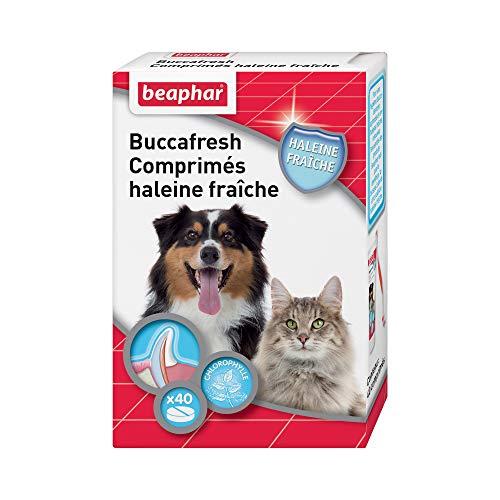 beaphar Tabletten frischer Atem - bekämpft Mundgeruch von Hund und Katze - auf Basis von natürlichem Chlorophyll-Extrakt - 2-3 Wochen Kur - 40 Tabletten