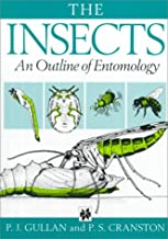 Insects : An Outline of Entomology