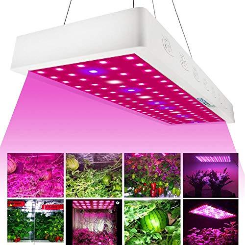 XTD 1000W Led Grow Light For Indoor Plants- Blue/Red/White LED Grow Light Full Spectrum Indoor Hydro Veg Flower Grow Panel - 450 * 140 * 60 MM A