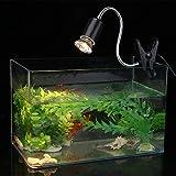 SOULONG Lampe d'Aquarium Chauffage de pour Tortue Terrestre 75W Lampe Chauffante...