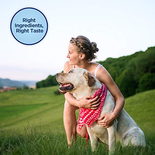 Natural Balance Limited Ingredient Treats Sweet Potato & Fish Formula Dog Treats, 14 Ounces, Grain Free