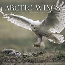 القطب الشمالي أجنحة طيور: من القطب الشمالي الوطنية الحياة البرية refuge
