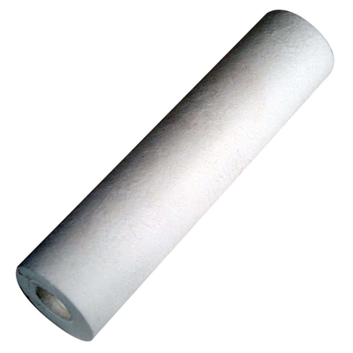 Hydro-Logic 22105 10-Inch by 2.5-Inch Small Boy Sediment Filter cokefdrvlryhe16