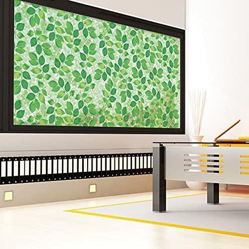 Película de Ventana Decorativa con Aislamiento térmico de Hoja Verde y Adhesivo antiestático, sin Pegamento Adhesivo Decorativo de Vidrio Verde O 60x200cm