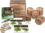 Indoor Herb Garden Starter Kit - Heirloom, Non-GMO Herb Seeds - Basil...