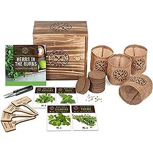 Indoor Herb Garden Starter Kit – Heirloom, Non-GMO Herb Seeds – Basil Thyme Parsley Cilantro Seed, Potting Soil, Pots…