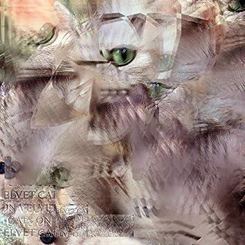Cats on Velvet