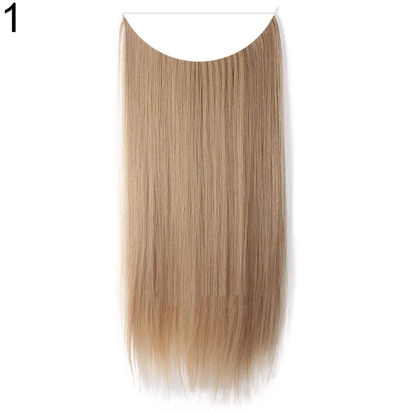 修正する書き出す異議slQinjiansav女性ウィッグ収納コンテナ22インチ女性ロングストレート/カーリーワイヤーヘッドバンドウィッグ目に見えない髪の延長