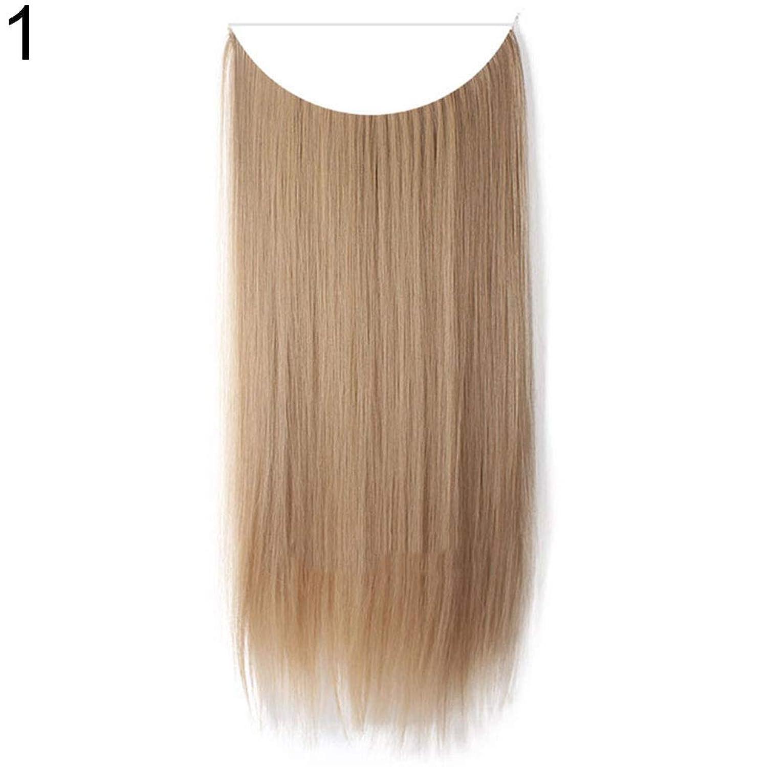 移行段落忘れるslQinjiansav女性ウィッグ収納コンテナ22インチ女性ロングストレート/カーリーワイヤーヘッドバンドウィッグ目に見えない髪の延長