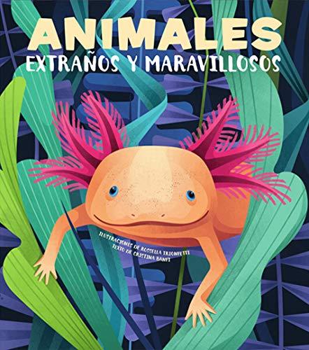 Animales extraños y maravillosos (VVKIDS) (Vvkids Libros Para Saber Más)
