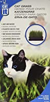 Catit Cat Grass, 2.6-Ounce by Catit