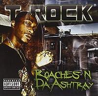 Roaches in Da Ashtray