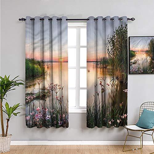Pcglvie Paisaje cortina de tela, cortinas de 160 cm de largo lago peipus naturaleza pradera tela impermeable de 52 x 63 pulgadas
