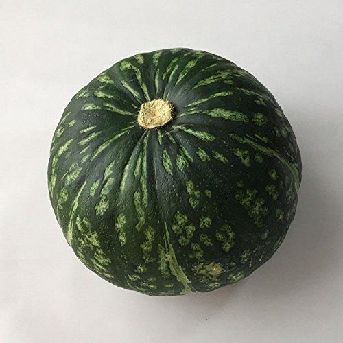 かぼちゃ1個 福岡産