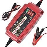 Cargador de batería Inteligente 12V 5A Mantenedor de batería...