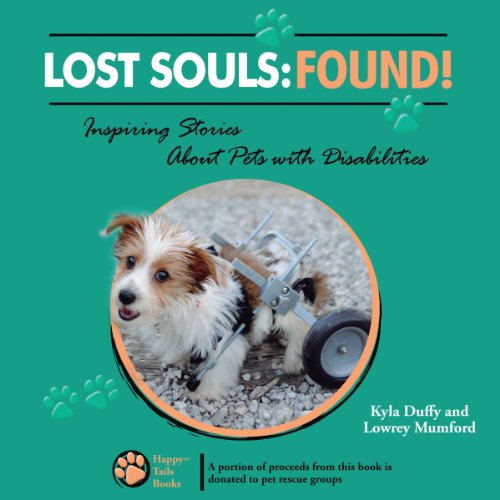 Lost Souls: Found! audiobook cover art
