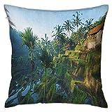 N\A Balinés Cuadrado Fundas de Almohada Terraza Campos de arroz Palmeras Granja Tradicional Mañana Amanecer Bali Indonesia Fundas de cojín Verdes Fundas de Almohada para sofá Dormitorio Coche
