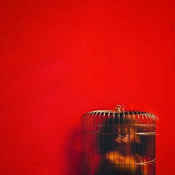 Aviary: Act II