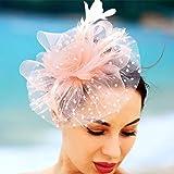 Fashband Bridal Shower Fascinator Cappello Fiore Maglie di piume su una fascia e una clip Cocktail Tea Party Copricapo Derby Kentucky Razze Cerimonia Matrimonio Cappello per ragazze e donne (rosa)