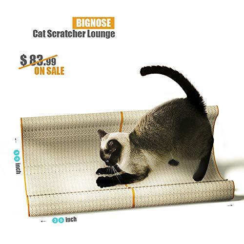 BIG NOSECat Cube Scratcher Lounge Feline Funiture Sofa