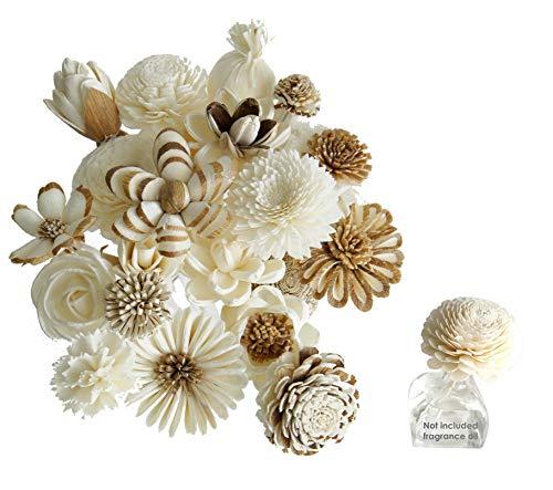 Exotic Plawanature Set mit 18 gemischten Sola-Holzblumen mit Schilfrohr-Diffusor für Zuhause, Aromaöl