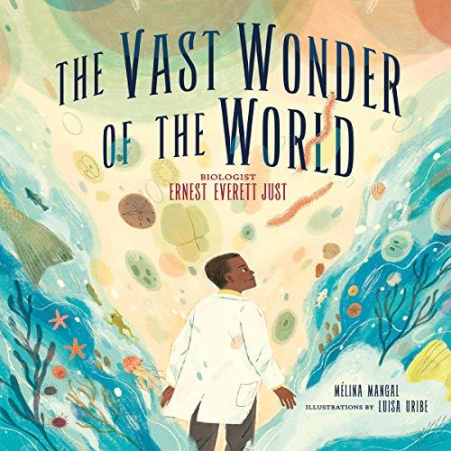 The Vast Wonder of the World audiobook cover art