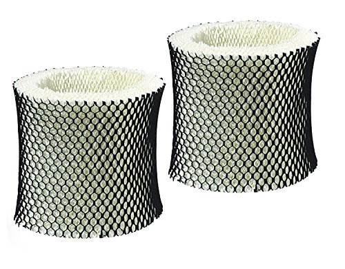 AQUA GREEN Holmes HWF65 Compatible Humidifier Wick Replacement Filter C (2 Pack)