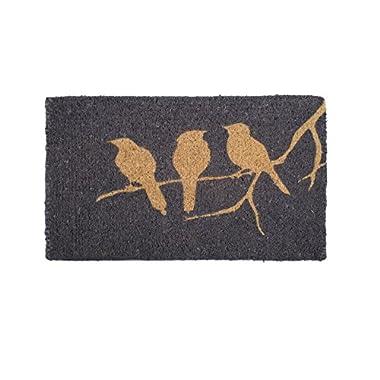 Handwoven, Low Profile Thin Doormat |  Entryway Door mat For Patio, Front Door | Decorative All-Season | Birds on Branch | 18  x 30  x 0.98