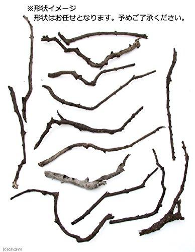 チャーム『形状お任せ煮込み済みスティック流木(約20~40cm)3本セット』