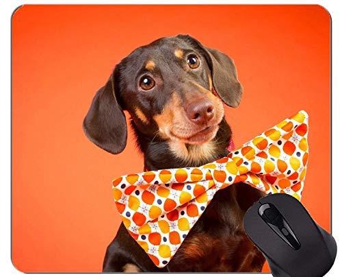 Naturkautschuk-Gaming-Mauspad mit Hundedackel bedruckt - genähte Kanten
