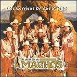 Songtexte von Banda Machos - Los corridos de los machos
