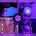 (2 Pack) UV Torch, Fulighture Pets Black Light 12LED 395nm, Dogs/Cats Urine Detector, Ultraviolet Flashlight Find Dry Stains on Carpets/Rugs/Floor with Batteries Included 12