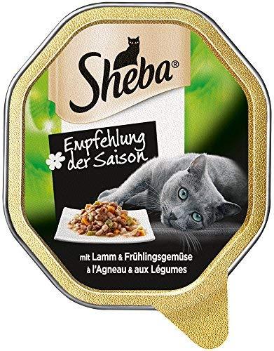Aanbeveling van het seizoen: kattenvoer met wisselende smaakkoorten, afhankelijk van het seizoen, 22 x 85 g kattenvoeding.
