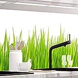 StickerProfis Küchenrückwand selbstklebend - Wiesen Gras - 1.5mm, Versteift, alle Untergründe, Hart PET Material, Premium 60 x 340cm