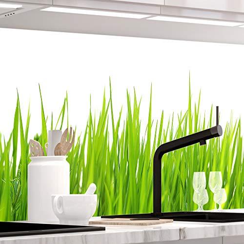 StickerProfis Küchenrückwand selbstklebend - Wiesen Gras - 1.5mm, Versteift, alle Untergründe, Hart PET Material, Premium 60 x 220cm