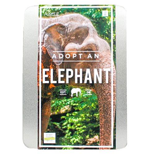 Gift Republic - Boîte Cadeau Adopt an Elephant