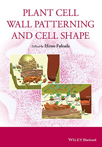 Plant Cell Wall Patterning and Cell Shape (English Edition)