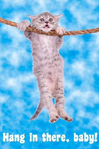Hang in There Baby Cat Retro Motivational Cool Wall Decor Art Print Poster 24x36