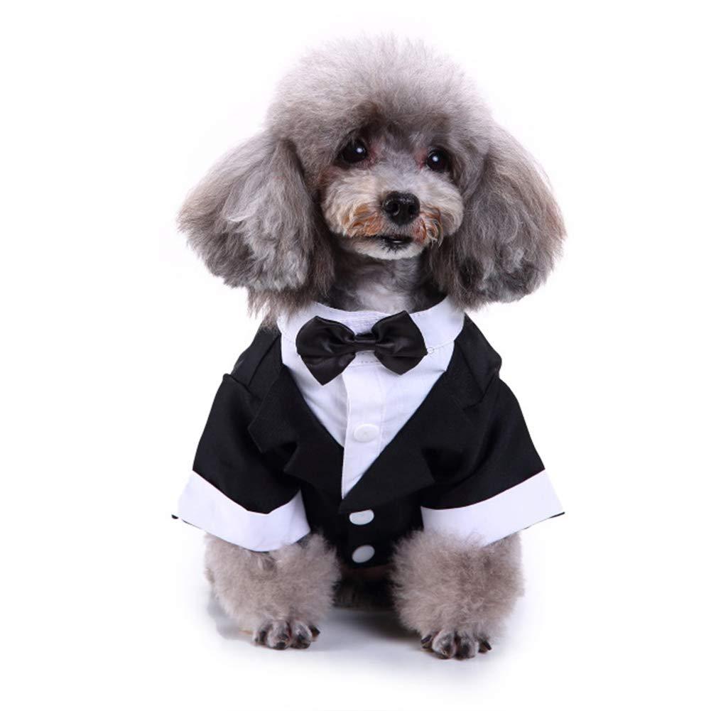 Camisa del Perro del Perrito del Animal Doméstico Ropa para Perros Pequeños, Traje Elegante Pajarita De Vestuario, Prince Perro Camisa De La Boda del Smoking Formal con Corbata De Negro,XL: Amazon.es: Hogar