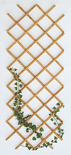 VERDELOOK Traliccio Estensibile in Bamboo, 60x240 cm, Ideale per Decorazione Esterni