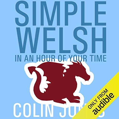 Simple Welsh in an Hour of Your Time Titelbild