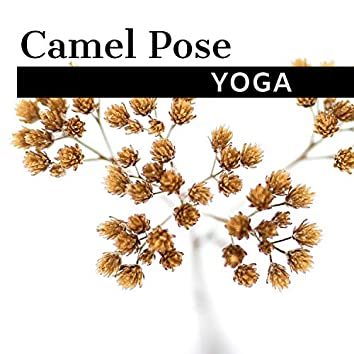 Camel Pose Yoga - Relaxing Indian Music