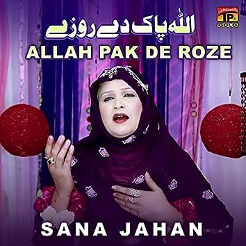 Allah Pak De Roze - Single