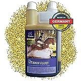 EMMA  Vitaminas para caballos I Suplementos Nutricionales I Cuidado...